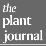 The Plant Journal - logo